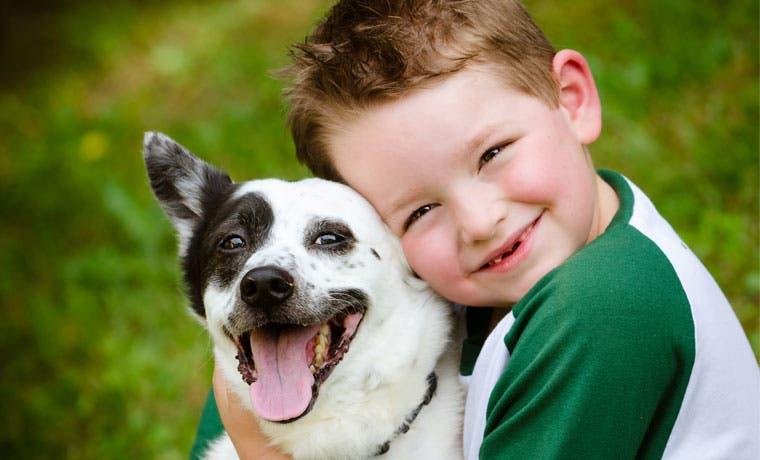 Mascotas buscarán hogar mañana en Monge Zapote