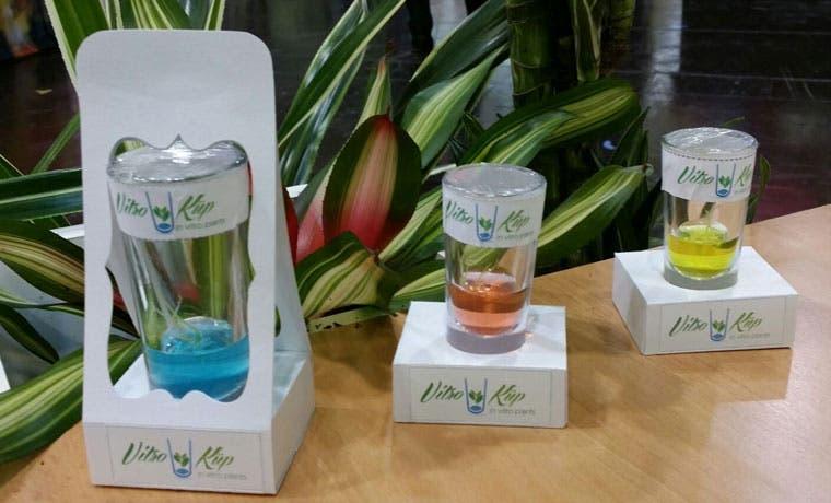Plantas in vitro: oportunidad de negocio para pyme rural