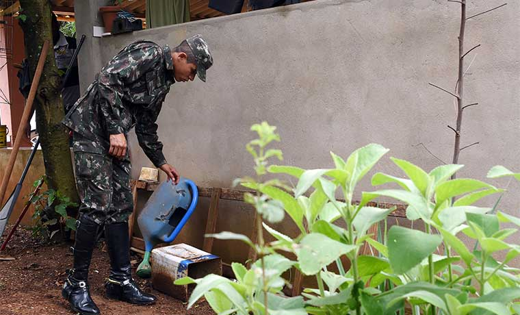 Ejército contra el zika en Brasil