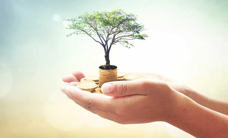 Programa de Gestión Ambiental de Popular Pensiones recibe reconocimiento internacional