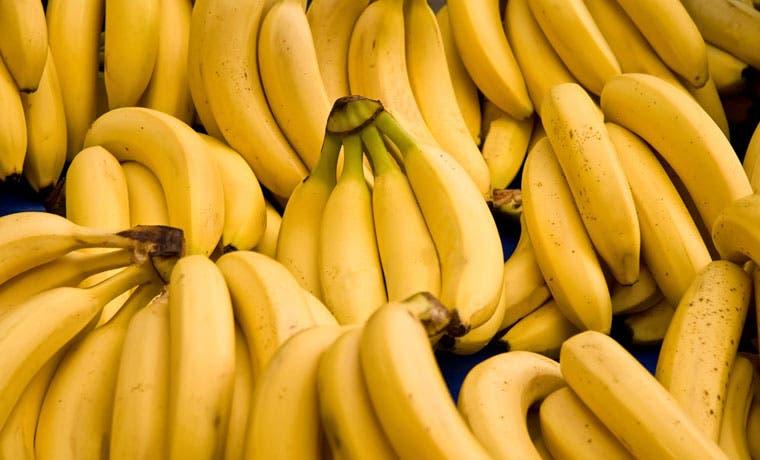 Costa Rica lidera foro internacional sobre banano