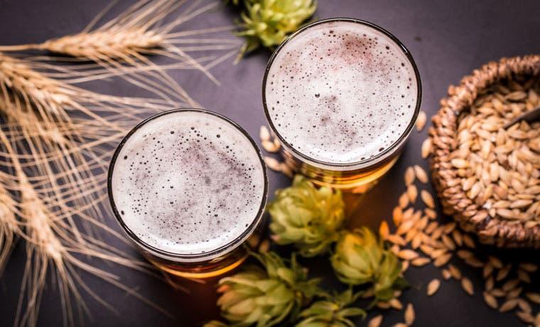 Productores ticos de cerveza artesanal podrían exportar hacia Estados Unidos