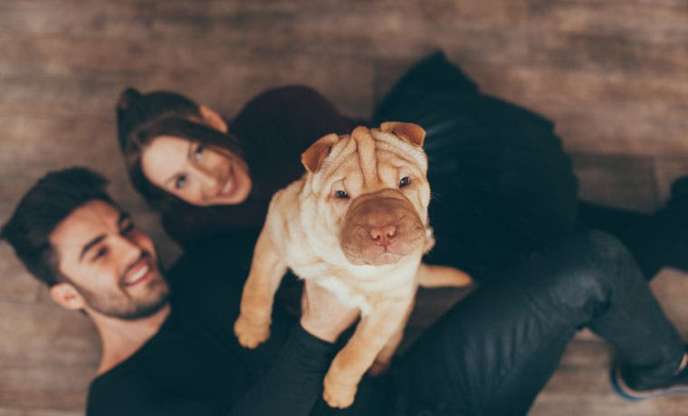 Experimento sensibiliza población sobre distintos tipos de familia