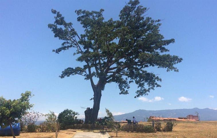 Restos de adultos mayores en abandono serán incinerados por Camposanto La Piedad