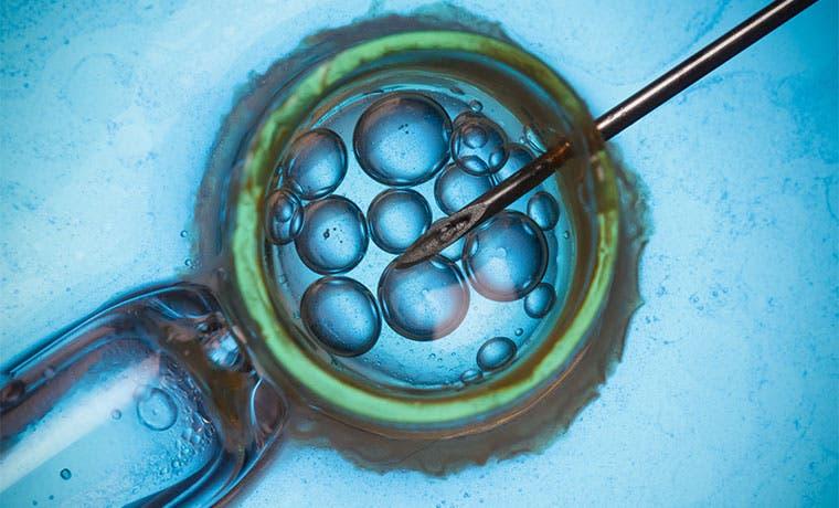 Centro Fecundar ya ofrece fecundación in vitro