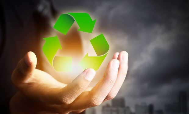 Empresas deberán adaptarse a nueva norma de carbono neutralidad