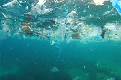 80% de residuos sólidos en mares es plástico
