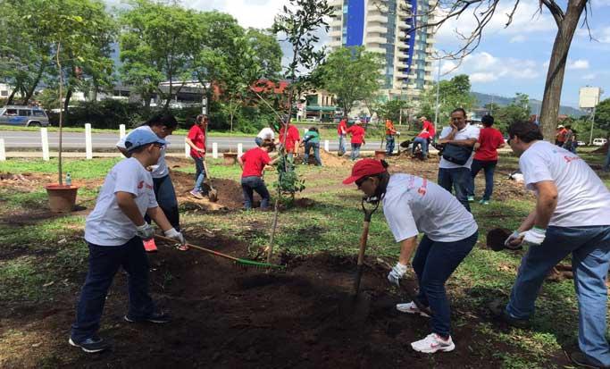 Unos 90 árboles fueron plantados en el Parque La Sabana