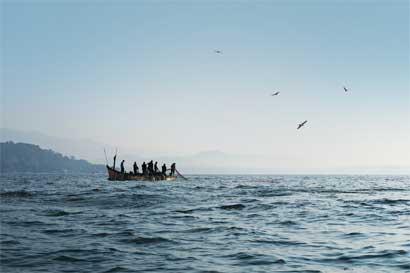 MarViva solicitó a diputados descartar proyecto de pesca de arrastre