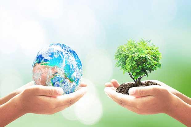 Organizaciones vecinales de Tibás ayudaron al medio ambiente
