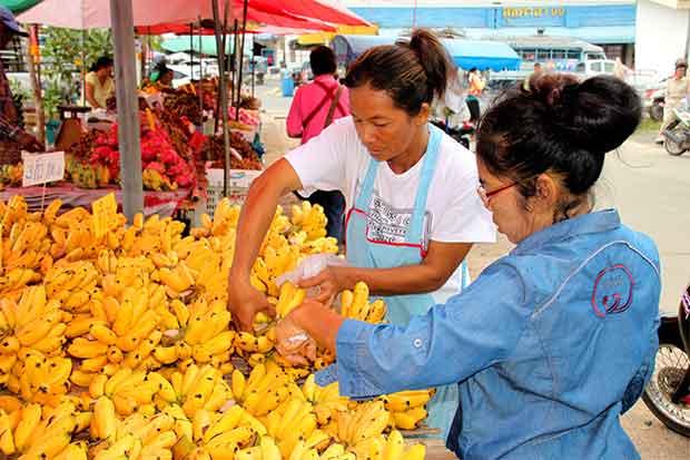"""Baby banano"" potenciaría exportación"