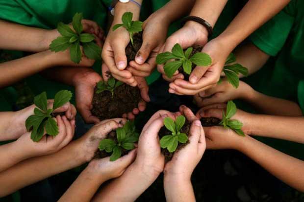 Spoon sembrará 100 árboles para obtener marca país