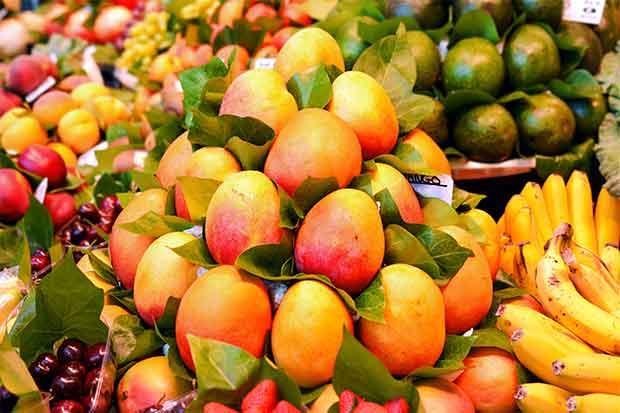 Cosecha de mango tuvo un buen año