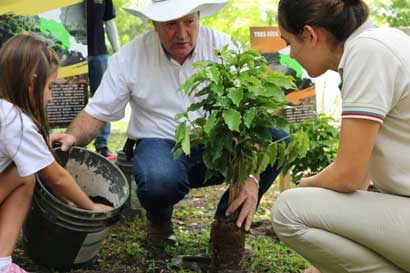 Estudiantes aprenderán de sostenibilidad sembrando café