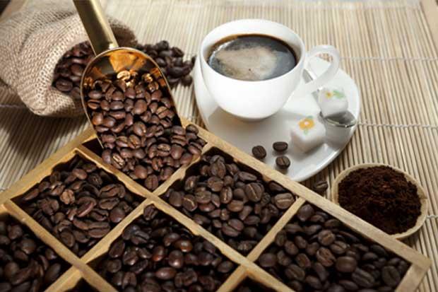 Empresarias de café buscarán vender sus productos en Estados Unidos
