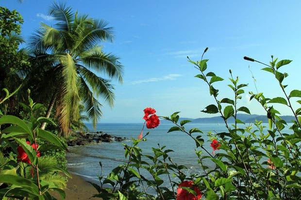 Nature Air ofrece promociones para tres destinos en estas vacaciones