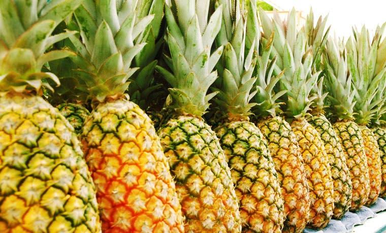 Agricultores de Puerto Rico rechazan importación de piña tica