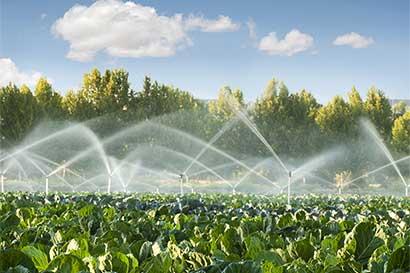 Agricultores y ecologistas enfrentados por el agua