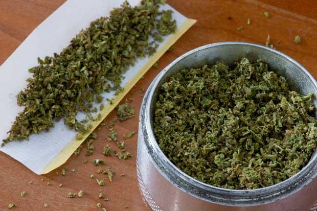 Usuario promedio de marihuana legal gasta $647 anuales en hierba