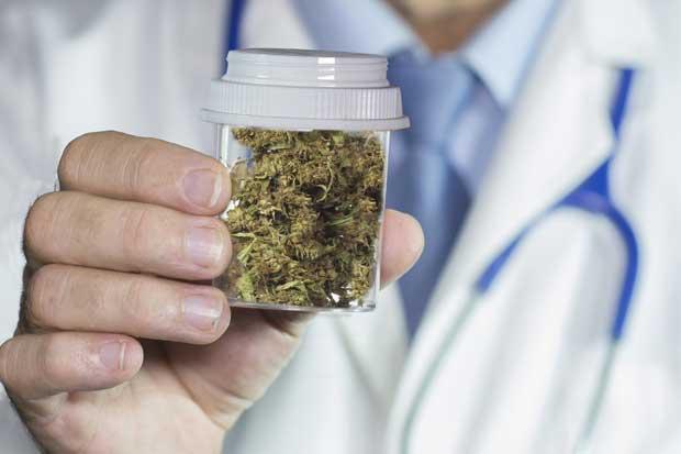 Farmacéuticos apoyan uso medicinal de derivados del cannabis
