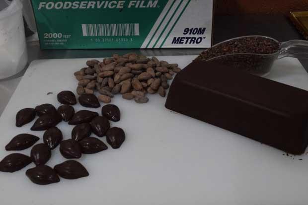 Finca de Upala coloca su chocolate en mercados europeos