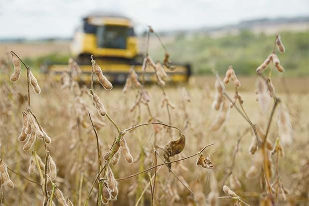 Cargill y Dreyfus paralizan plantas en Brasil ante bajos márgenes