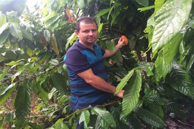 Productores de cacao serán beneficiados con alianza público-privada