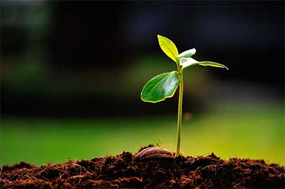 Costa Rica colabora para que Cumbre Mundial de Turismo sea carbono neutral