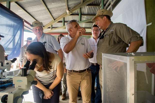 Gobierno brinda ¢369 millones a productores agropecuarios en Limón