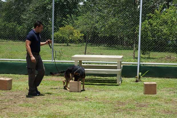 Gobierno inauguró segunda unidad canina en el país