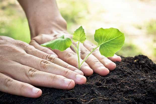 INA impartirá curso para reducir huella de carbono personal