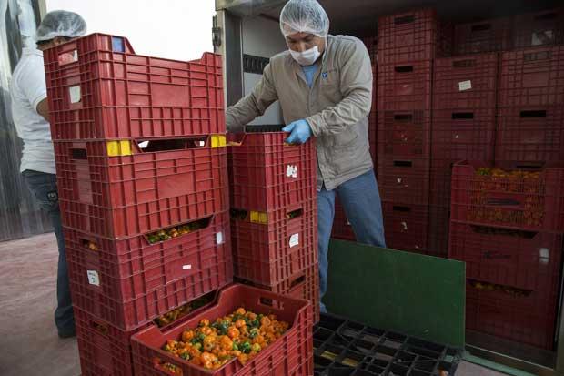 País discutirá implicaciones del derecho agrario
