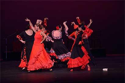 """Espectáculo """"Flamenco es pasión"""" se realizará el domingo"""