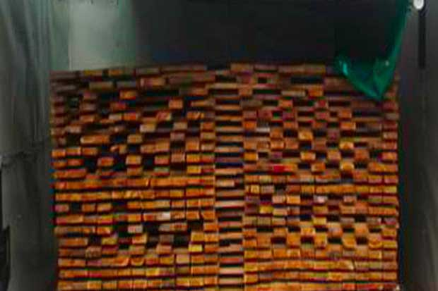 TEC construye secadora solar de madera para pymes