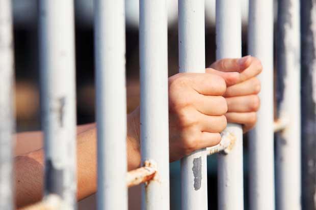 Dueño de animal que mate a una persona sería castigado con hasta ocho años de cárcel