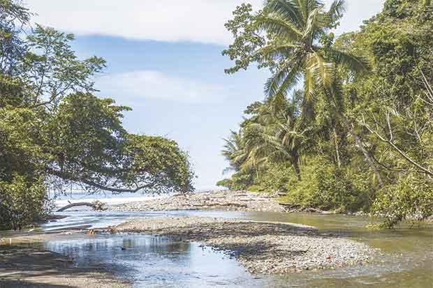 Parque Nacional Corcovado catalogado el mejor del planeta