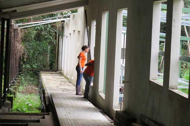 Ayude a que el Hospital de Vida Silvestre sea una realidad