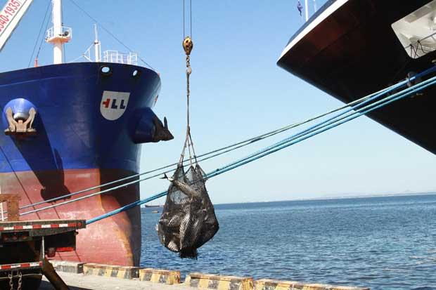 Venta de acciones de concesionaria de Puerto Caldera no afectaría producción