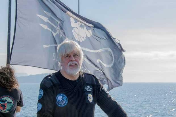 Paul Watson arremete contra postura de Costa Rica sobre tiburones