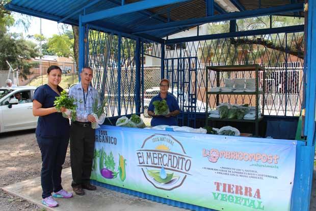 Pacientes del Psiquiátrico cuentan con invernadero y venta de hortalizas