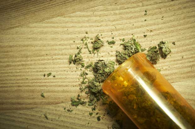 Heredia, San José y Cartago son los mayores consumidores de marihuana