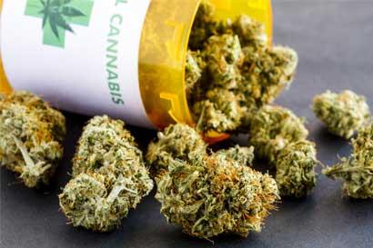 Avanza proyecto de marihuana medicinal tras rechazo a mociones de Abelino Esquivel
