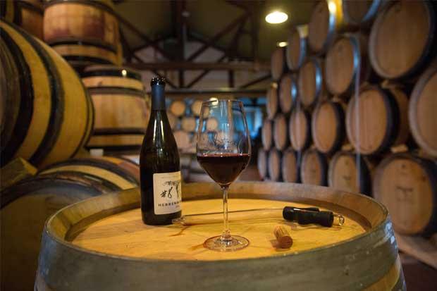 Producción mundial de vino tendrá su cosecha más baja en 20 años