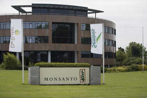 Monsanto habló con otras tres compañías antes del acuerdo con Bayer