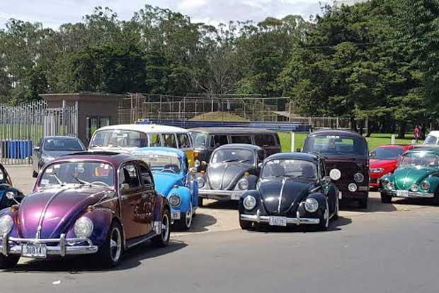 Convención de vehículos Volkswagen expondrá más de 200 carros