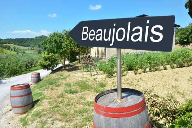 Regresa la fiesta del vino francés