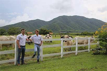 Jóvenes emprenden negocio de carne 100% de pastoreo