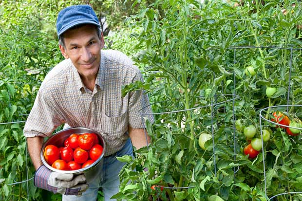 América Latina triplicará sus exportaciones agroalimentarias para 2024