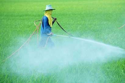 Ministerio de Agricultura rechazó cuestionamiento de Defensoría sobre registro de plaguicidas