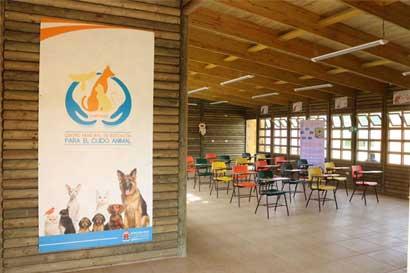 Municipalidad de Cartago crea primer centro de educación para cuido de animales